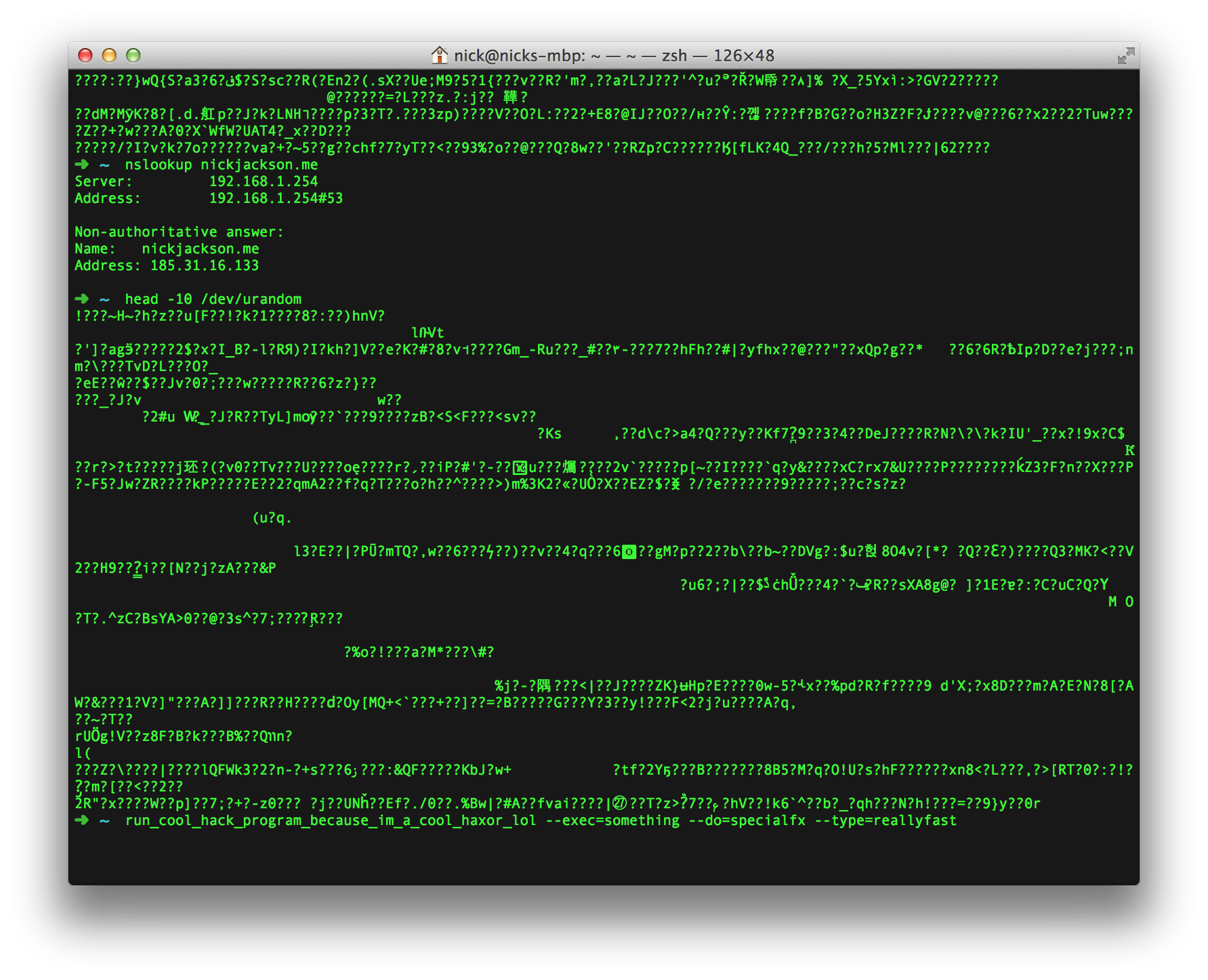 A screenshot of my terminal, showing an IP address amid gibberish.